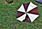 Ein zurückgelassener Regenschirm