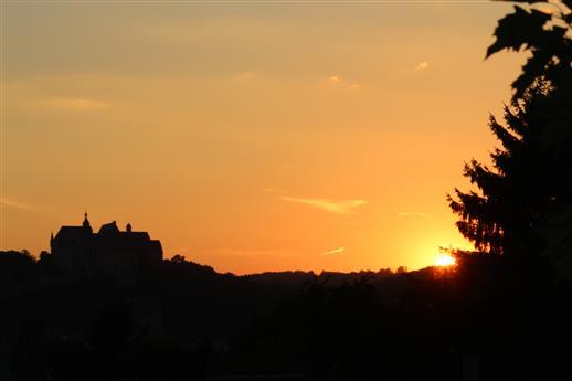 Stein und Baum im Sonnenuntergang