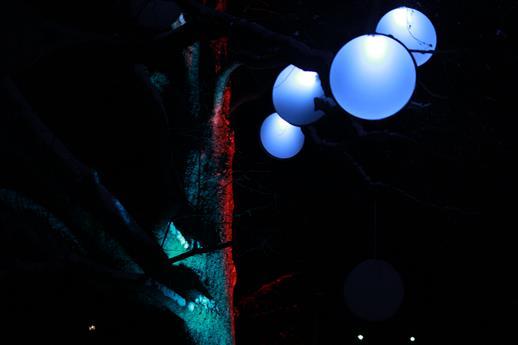 Baumlichter