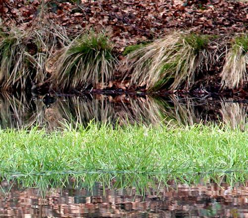 Dialog von Erde und Wasser