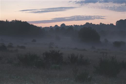 Im Zwielicht vor Sonnenaufgang