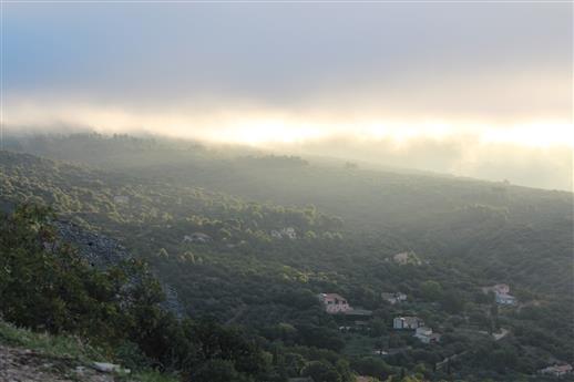 Früher Morgen in der Provence