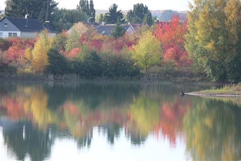 Herbstfarben - Spiegel