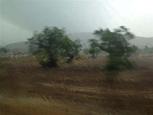 Regenbild I