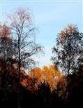 Oktoberleuchten
