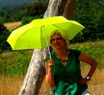 Sonnen - Schirm