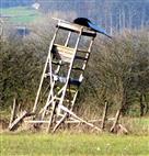 Vom Besuch dieser Aussichtsplattform wird dringend abgeraten!