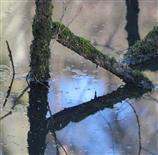 Spiegelgeometrie