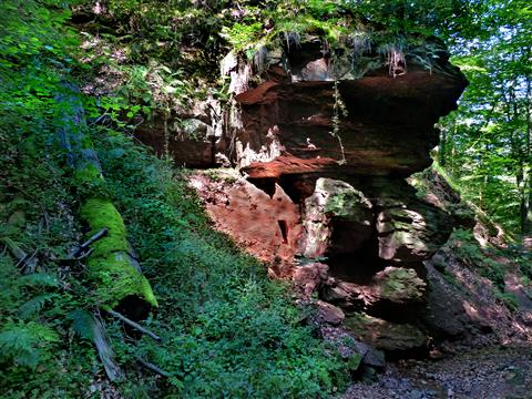Buntsandsteinfelsen im Schluchtwald der Seltenbachschlucht (Spessart)