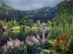 Am Lunzer See in Niederösterreich.